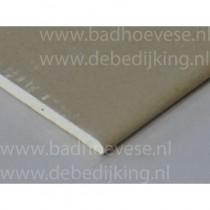 Stucplaat  9,5 mm